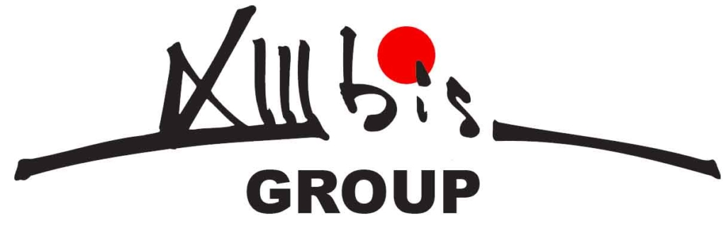 13 BIS GROUP